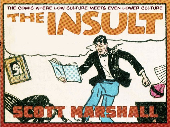 The Insult book cover